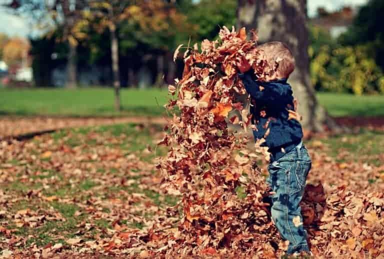 Детето и дворът